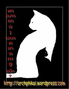 whitecat.png